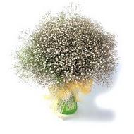 Adıyaman çiçek mağazası , çiçekçi adresleri  cam yada mika vazo içerisinde cipsofilya demeti