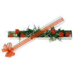 Adıyaman çiçek siparişi sitesi  6 adet kirmizi gül kutu içerisinde
