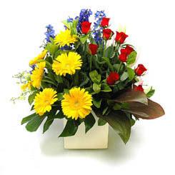 Adıyaman online çiçek gönderme sipariş  9 adet gül ve kir çiçekleri cam yada mika vazoda