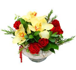 Adıyaman çiçek gönderme  1 kandil kazablanka ve 5 adet kirmizi gül