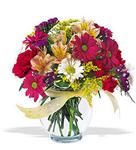 Adıyaman çiçek , çiçekçi , çiçekçilik  cam yada mika vazo içerisinde karisik kir çiçekleri