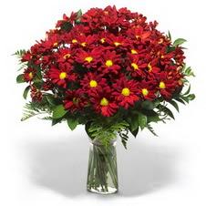 Adıyaman çiçek yolla  Kir çiçekleri cam yada mika vazo içinde