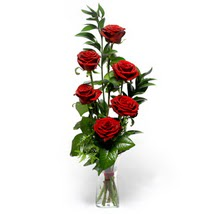 Adıyaman çiçek siparişi sitesi  cam yada mika vazo içerisinde 6 adet kirmizi gül
