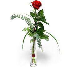 Adıyaman 14 şubat sevgililer günü çiçek  Sana deger veriyorum bir adet gül cam yada mika vazoda