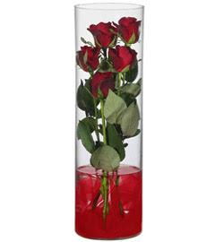 cam içerisinde 7 adet kirmizi gül  Adıyaman çiçekçiler