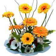 camda gerbera ve mis kokulu kir çiçekleri  Adıyaman çiçekçi telefonları