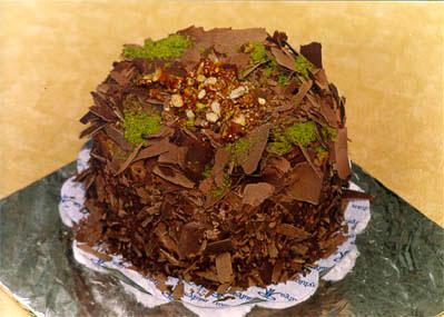 Çikolatali 4 ila 6 kisilik yas pasta  Adıyaman çiçek gönderme sitemiz güvenlidir