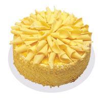 Muzlu pasta 4 ile 6 kisilik yas pasta  Adıyaman çiçekçi telefonları