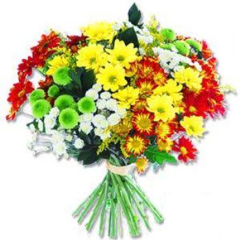 Kir çiçeklerinden buket modeli  Adıyaman online çiçek gönderme sipariş