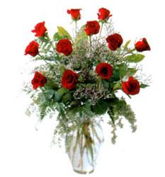 Vazo içerisinde 11 kirmizi gül  Adıyaman çiçek siparişi vermek