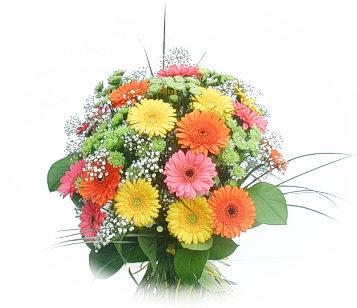 13 adet gerbera çiçegi buketi  Adıyaman online çiçek gönderme sipariş