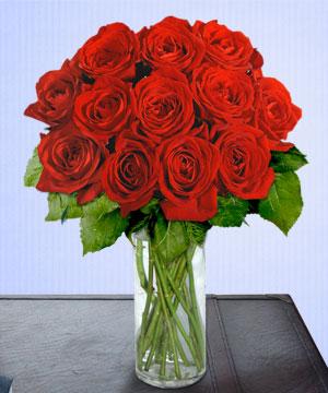 Anneme 12 adet cam içerisinde kirmizi gül  Adıyaman çiçek siparişi sitesi