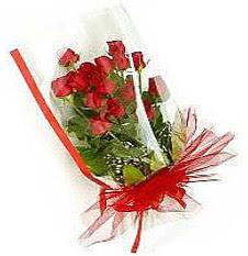 13 adet kirmizi gül buketi sevilenlere  Adıyaman çiçek siparişi vermek