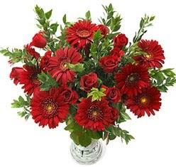 5 adet kirmizi gül 5 adet gerbera aranjmani  Adıyaman hediye çiçek yolla