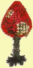 Adıyaman çiçek gönderme  dügün açilis çiçekleri  Adıyaman çiçek online çiçek siparişi