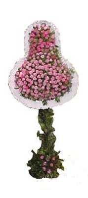 Adıyaman ucuz çiçek gönder  dügün açilis çiçekleri  Adıyaman internetten çiçek siparişi