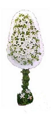 Adıyaman çiçek siparişi sitesi  nikah , dügün , açilis çiçek modeli  Adıyaman online çiçek gönderme sipariş