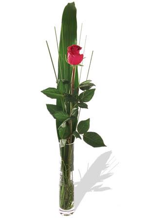 1 adet cam vazo içerisinde kirmizi gül  Adıyaman çiçek , çiçekçi , çiçekçilik