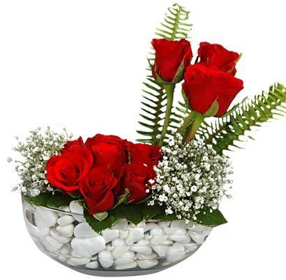 cam içerisinde 9 adet kirmizi gül  Adıyaman çiçek siparişi vermek