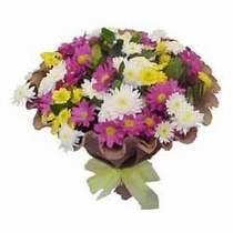 Adıyaman çiçekçi telefonları  Mevsim kir çiçegi demeti