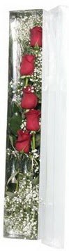 Adıyaman çiçek siparişi sitesi   5 adet gülden kutu güller
