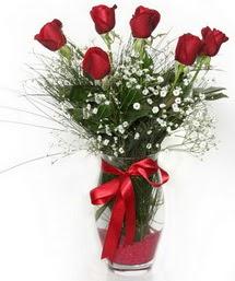 7 adet gülden cam içerisinde güller  Adıyaman 14 şubat sevgililer günü çiçek