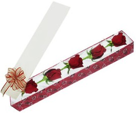 Adıyaman internetten çiçek satışı  kutu içerisinde 5 adet kirmizi gül