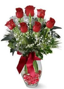 Adıyaman internetten çiçek siparişi  7 adet kirmizi gül cam vazo yada mika vazoda