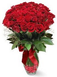 19 adet essiz kalitede kirmizi gül  Adıyaman 14 şubat sevgililer günü çiçek