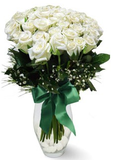 19 adet essiz kalitede beyaz gül  Adıyaman çiçekçiler