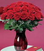 Adıyaman çiçek online çiçek siparişi  11 adet Vazoda Gül sevenler için ideal seçim