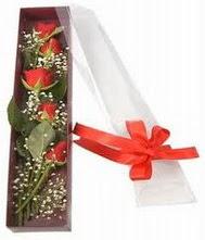 kutu içinde 5 adet kirmizi gül  Adıyaman internetten çiçek siparişi
