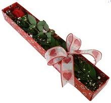 Tek kirmizi gül kutu içerisinde  Adıyaman güvenli kaliteli hızlı çiçek