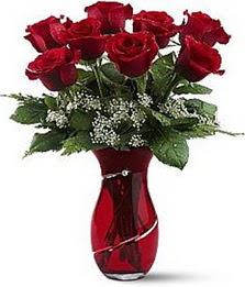 Vazo içinde 8 adet kirmizilar içinde güller  Adıyaman internetten çiçek siparişi