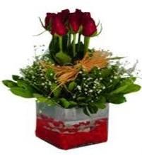Adıyaman çiçek gönderme  7 adet mika yada cam vazoda gül tanzimi