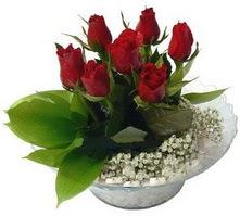 Adıyaman internetten çiçek satışı  cam yada mika içerisinde 5 adet kirmizi gül