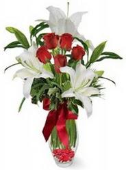 Adıyaman çiçek siparişi vermek  5 adet kirmizi gül ve 3 kandil kazablanka