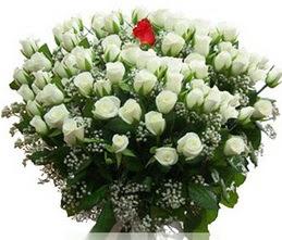 Adıyaman internetten çiçek satışı  100 adet beyaz 1 adet kirmizi gül buketi