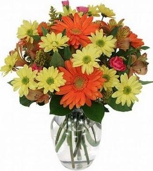 Adıyaman hediye sevgilime hediye çiçek  vazo içerisinde karışık mevsim çiçekleri