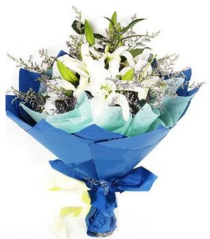 Adıyaman anneler günü çiçek yolla  4 adet dal kazablankadan görsel buket