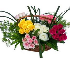 Adıyaman ucuz çiçek gönder  35 adet rengarenk güllerden sepet tanzimi