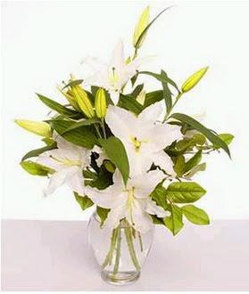 Adıyaman çiçek gönderme  2 dal cazablanca vazo çiçeği