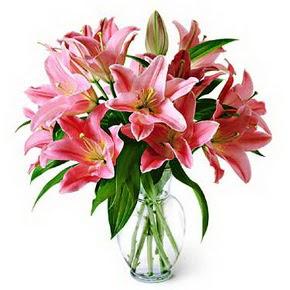 3 dal kazablanka görsel vazosu  Adıyaman internetten çiçek siparişi