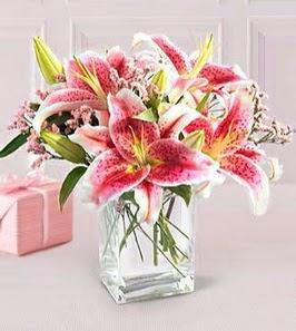 2 dal kazablanka görsel vazosu  Adıyaman çiçek siparişi sitesi