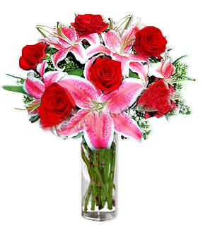 Adıyaman çiçek yolla  1 dal cazablanca ve 6 kırmızı gül çiçeği