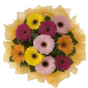 Adıyaman İnternetten çiçek siparişi  11 adet karışık gerbera çiçeği buketi