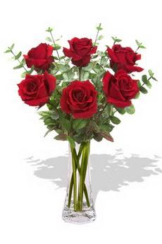Adıyaman çiçekçi mağazası  6 kırmızı gül vazosu