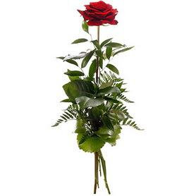 Adıyaman online çiçekçi , çiçek siparişi  1 adet kırmızı gülden buket