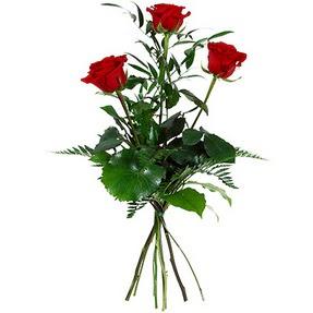 Adıyaman uluslararası çiçek gönderme  3 adet kırmızı gülden buket