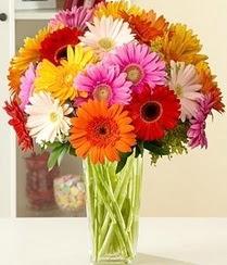 Adıyaman çiçek servisi , çiçekçi adresleri  15 adet gerbera çiçek vazosu